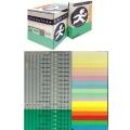Pacesetter Premium Coloured Paper A4 80g Parrot